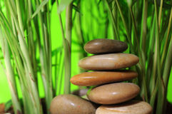 Stack of stone and young bamboo tree Stock Photo