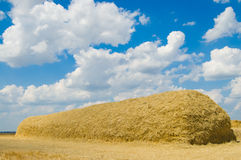 Stack of straw Stock Photography