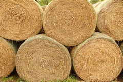 A stack of straw. Stack of straw on a farm Stock Photography