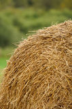 Stack of Straw in the Field Stock Photos