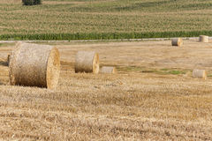 Stack of straw in the field Royalty Free Stock Photos