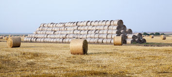 Stack of straw in the field Stock Photography