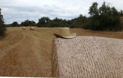 Stack of straw on the field Stock Image