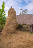 Stack of straw or hay bales in a rural landscape Stock Images
