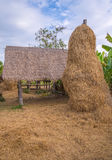 stack of straw or hay bales in a rural landscape Stock Photo