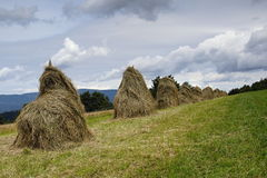 Stack of straw Royalty Free Stock Photography