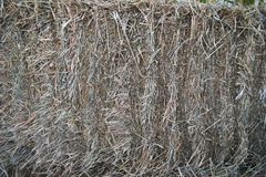 Stack of straw texture. Stack of hay dry grass. Stocks of feed for livestock. Stack of straw texture image. Stack of hay dry grass. Stocks of feed for livestock royalty free stock images