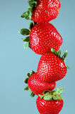 Stack of strawberries stock images