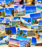 Stack of summer beach shots Royalty Free Stock Image
