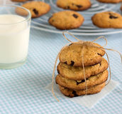 Stack of sweet cookies with chocolate pieces and milk. stock photos