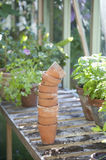Stack Of Terracotta Flowerpots In Greenhouse Stock Image