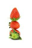Stack of three strawberries Stock Image