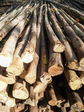 Stack of timber Royalty Free Stock Photos