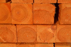 Stack of timber piles Royalty Free Stock Photography