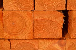 Stack of timber piles Stock Images
