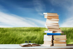 Stack of Travel Guides before a green Meadow Royalty Free Stock Image