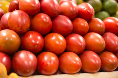 Stack of tree tomato tamamoro, tamarillo in the Royalty Free Stock Photos
