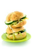 Stack of two fresh sandwiches on a green plate. Isolated on white background royalty free stock images