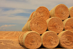 Stack up Round Bales of Hay. Large freshly baled round hay bales stacked out in the farm field Stock Photography