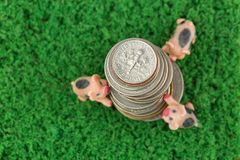 Stack of US coins, American money with blurred 3 pigs climbing, Stock Images