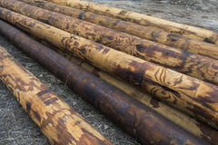 Stack of utility telephone poles_2 Stock Images