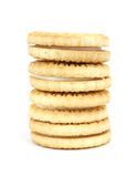 Stack of vanilla sandwich creme cookies Stock Images