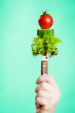 Stack of vegetales on knife in hand Royalty Free Stock Image