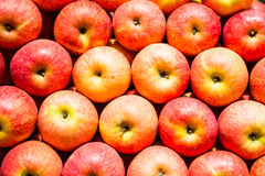 Stack of vibrant textured red apples Stock Image
