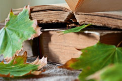 Stack of vintage books in autumn maple leaves close up Royalty Free Stock Photo