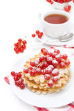stack of waffles with red currants, powdered sugar and tea Stock Photo