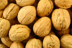 Stack of Walnut Stock Images