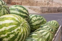 A stack of watermelons Royalty Free Stock Photo