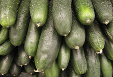 Stack of Wet Cucumbers Royalty Free Stock Photography