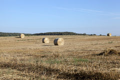 Stack of wheat straw Royalty Free Stock Images