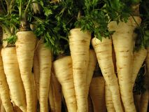 Stack of white carrots Stock Photography