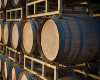 Stack of wine barrels Stock Images