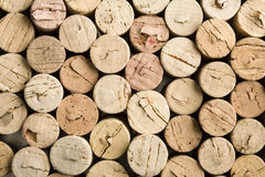 Stack of wine cork Royalty Free Stock Photos