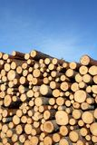 Stack of Wood and Blue Sky Stock Photography