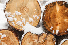 Stack of wood cut with snow Royalty Free Stock Photography