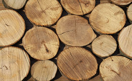 Stack of wood. Stack of dry cut wood Stock Image