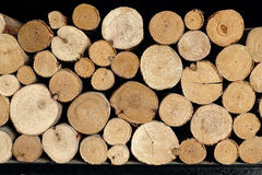 Stack of wood logs Royalty Free Stock Photos