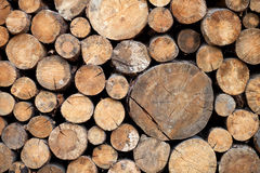 Stack of wood logs, wooden abstract background outdoor. Stock Photo