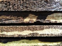 Wood with rough cutting Stock Photography