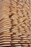 Stack of wooden boards. Stored outdoor Stock Photography