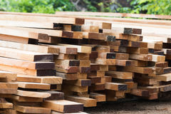 Stack of wooden plank. Raw wooden plank for construction work Stock Image