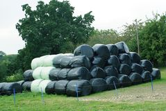 Stack of wrapped hay bales Stock Photo