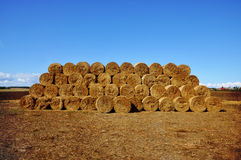 Stacked bales of hay royalty free stock image