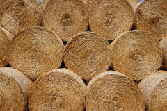 Stacked bales of hay Stock Images