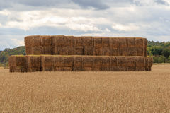 Stacked Bales of Hay Royalty Free Stock Photos