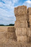 Stacked bales of straw Stock Images